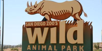 샌디에고 Wild Animal Park